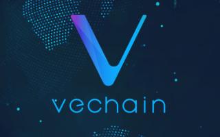 Криптовалюта – VeChain