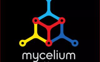 Кошелек Mycelium — обзор